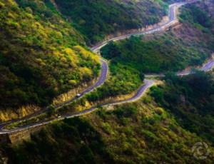 मुन्नार रोड 8