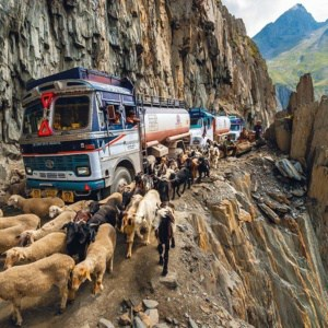 10 ख़तरनाक भारतीय सड़कें 2