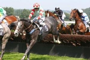 Horse Racing घुड़दौड़