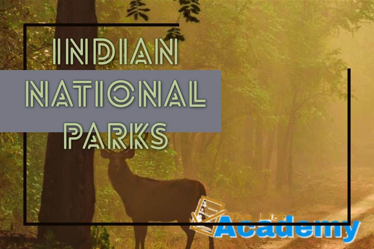 Cover Image For List : National Parks In India