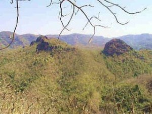 सतपुड़ा राष्ट्रीय उद्यान Satpura National Park