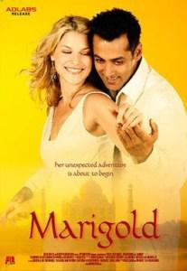 मैरीगोल्ड Marigold