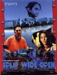 स्प्लिट वाइड ओपन (फिल्म) Split Wide Open