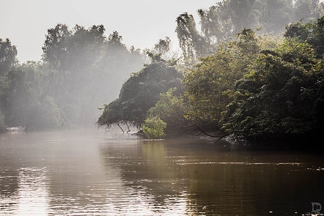 भीतरकनिका राष्ट्रीय उद्यान Bhitarkanika National Park