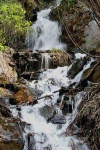 ग्रेट हिमालयन राष्ट्रीय उद्यान Great Himalayan National Park