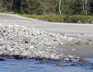 नमेरी राष्ट्रीय उद्यान Nameri National Park