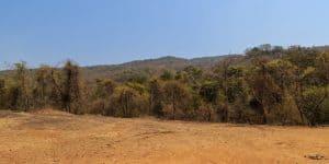 संजय गांधी राष्ट्रीय उद्यान Sanjay Gandhi National Park