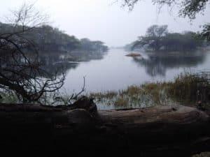 सुल्तानपुर राष्ट्रीय अभ्यारण्य Sultanpur National Park
