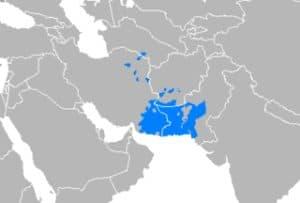 बलोच भाषा Balochi language