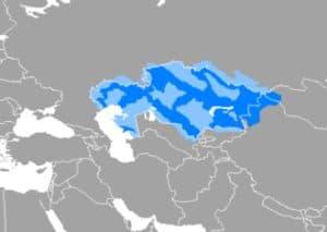 कज़ाख़ भाषा Kazakh language