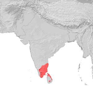 तमिल भाषा Tamil language